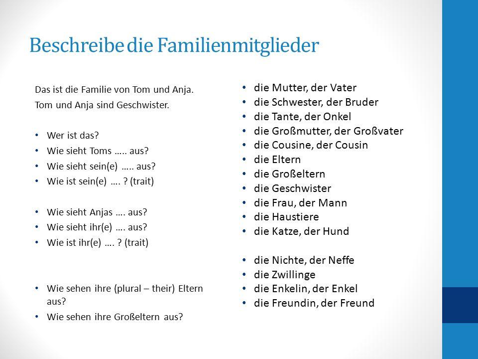 Beschreibe die Familienmitglieder Das ist die Familie von Tom und Anja. Tom und Anja sind Geschwister. Wer ist das? Wie sieht Toms ….. aus? Wie sieht