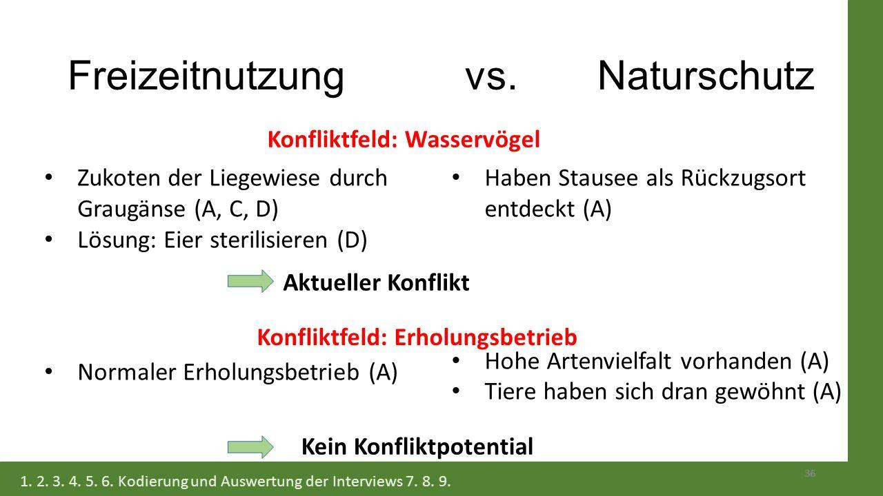 Freizeitnutzung vs. Naturschutz 36 Zukoten der Liegewiese durch Graugänse (A, C, D) Lösung: Eier sterilisieren (D) Normaler Erholungsbetrieb (A) Haben