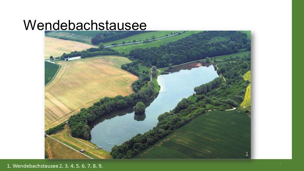 Interessengruppen - Interviewpartner Bürgerinitiative für den Erhalt des Wendebachstausees Biologische Schutzgemeinschaft 15 1.