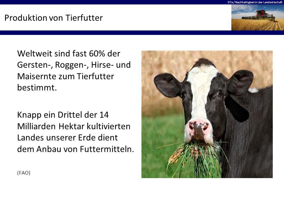 07a / Nachhaltigkeit in der Landwirtschaft Produktion von Tierfutter Weltweit sind fast 60% der Gersten-, Roggen-, Hirse- und Maisernte zum Tierfutter