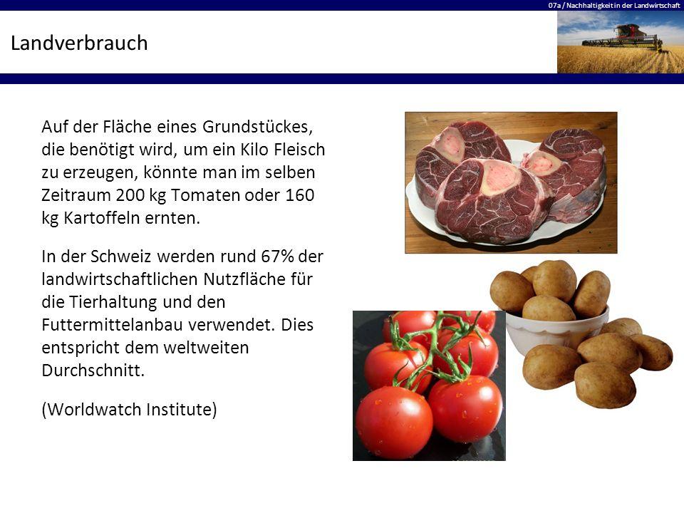 07a / Nachhaltigkeit in der Landwirtschaft Landverbrauch Auf der Fläche eines Grundstückes, die benötigt wird, um ein Kilo Fleisch zu erzeugen, könnte