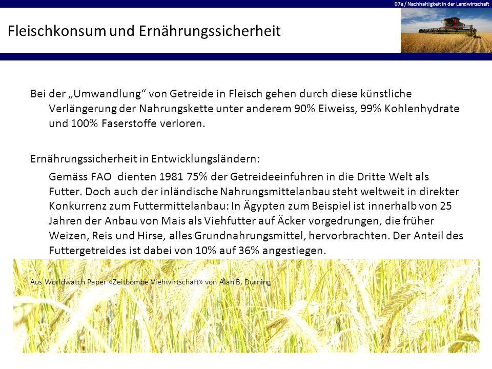 """07a / Nachhaltigkeit in der Landwirtschaft Fleischkonsum und Ernährungssicherheit Bei der """"Umwandlung"""" von Getreide in Fleisch gehen durch diese künst"""