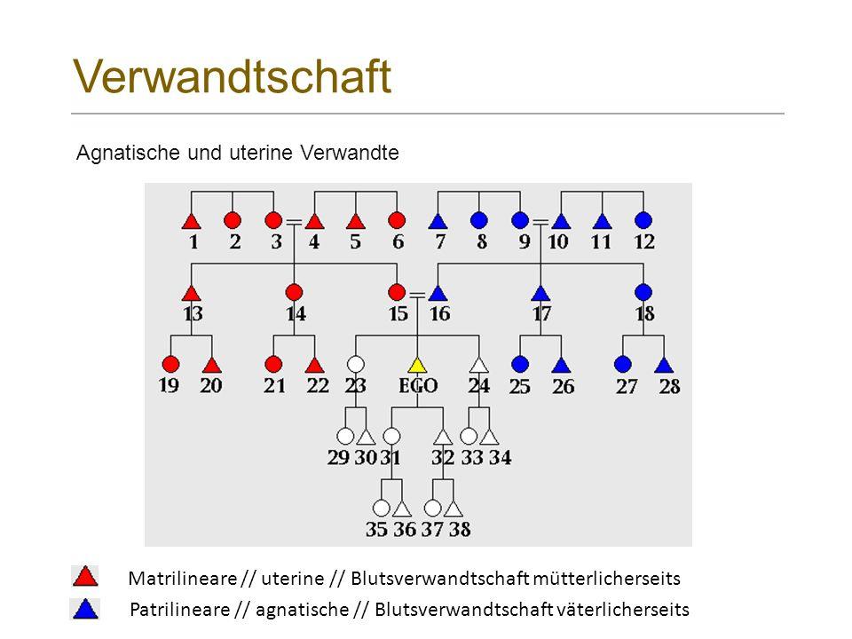 Verwandtschaft Agnatische und uterine Verwandte Patrilineare // agnatische // Blutsverwandtschaft väterlicherseits Matrilineare // uterine // Blutsverwandtschaft mütterlicherseits