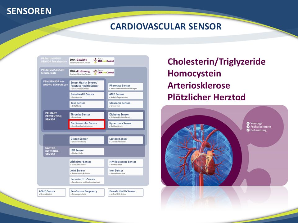 SENSOREN CARDIOVASCULAR SENSOR Cholesterin/Triglyzeride Homocystein Arteriosklerose Plötzlicher Herztod