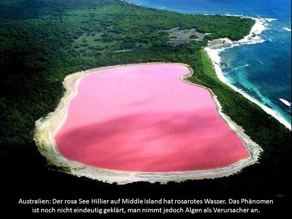 Belize: Das große blaue Loch ist ein Süßwasserreservoir auf offener See an der Küste von Belize.