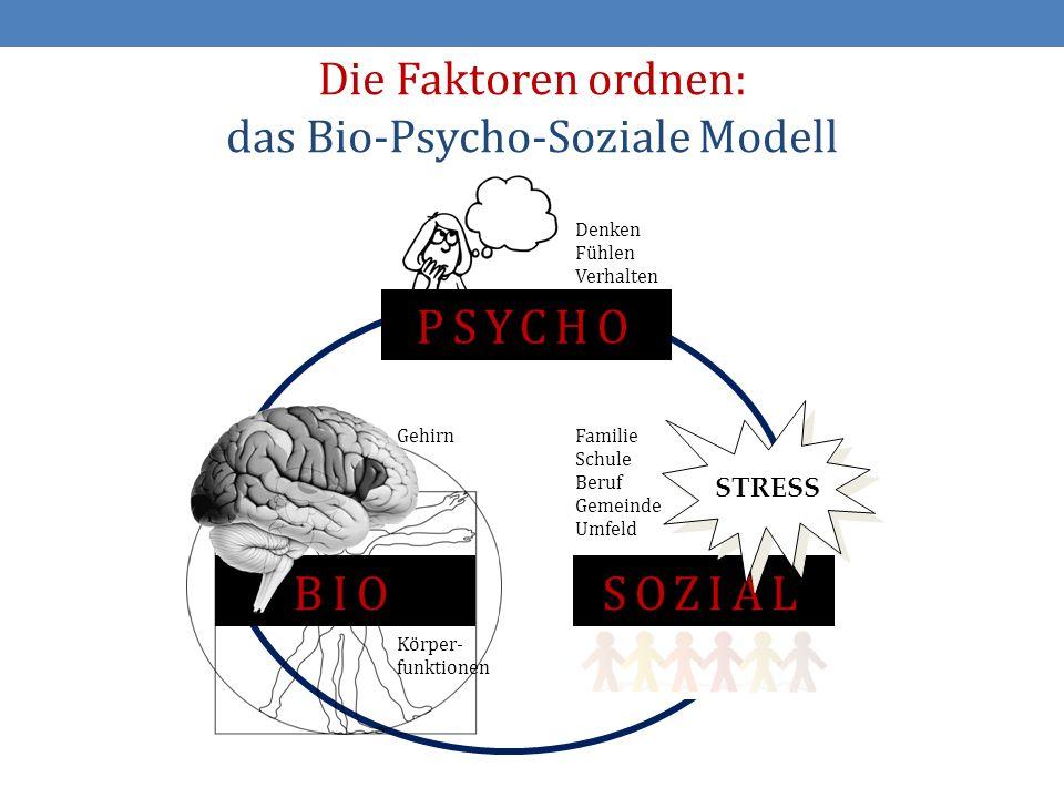 15 Die Faktoren ordnen: das Bio-Psycho-Soziale Modell BIO Gehirn Körper- funktionen PSYCHO Denken Fühlen Verhalten SOZIAL STRESS Familie Schule Beruf Gemeinde Umfeld