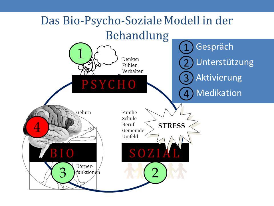 16 1 2 3 4 Gespräch Unterstützung Aktivierung Medikation Das Bio-Psycho-Soziale Modell in der Behandlung BIO Gehirn Körper- funktionen PSYCHO Denken Fühlen Verhalten SOZIAL STRESS Famlie Schule Beruf Gemeinde Umfeld 4 1 3 2