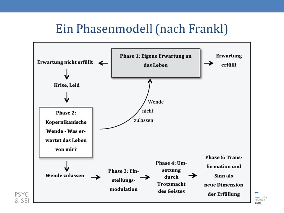 28 Ein Phasenmodell (nach Frankl)