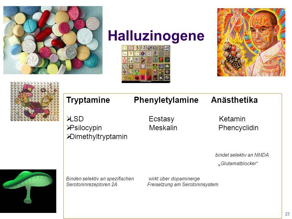 "23 Halluzinogene Tryptamine Phenyletylamine Anästhetika  LSD Ecstasy Ketamin  Psilocypin Meskalin Phencyclidin  Dimethyltryptamin bindet selektiv an NMDA "" Glutamatblocker Binden selektiv an spezifischen wirkt über dopaminerge Serotoninrezeptoren 2A Freisetzung am Serotoninsystem"