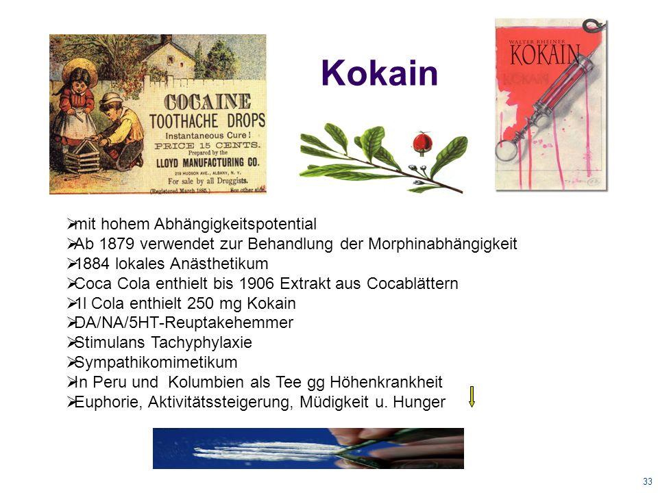 33 Kokain  mit hohem Abhängigkeitspotential  Ab 1879 verwendet zur Behandlung der Morphinabhängigkeit  1884 lokales Anästhetikum  Coca Cola enthielt bis 1906 Extrakt aus Cocablättern  1l Cola enthielt 250 mg Kokain  DA/NA/5HT-Reuptakehemmer  Stimulans Tachyphylaxie  Sympathikomimetikum  In Peru und Kolumbien als Tee gg Höhenkrankheit  Euphorie, Aktivitätssteigerung, Müdigkeit u.