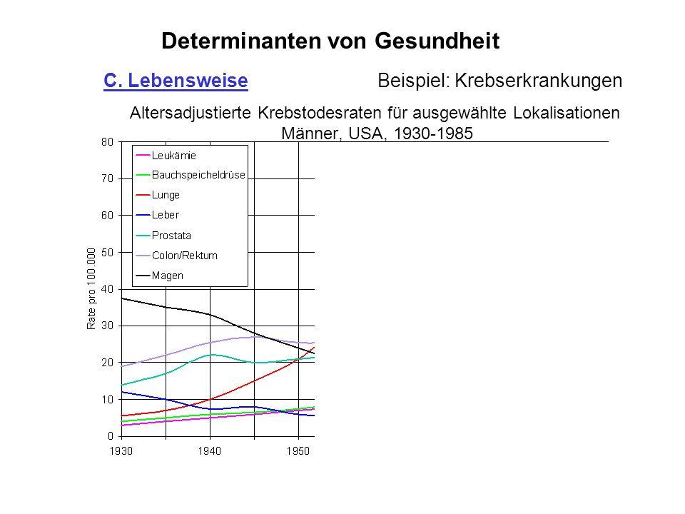 Altersadjustierte Krebstodesraten für ausgewählte Lokalisationen Männer, USA, 1930-1985 Determinanten von Gesundheit C. LebensweiseBeispiel: Krebserkr