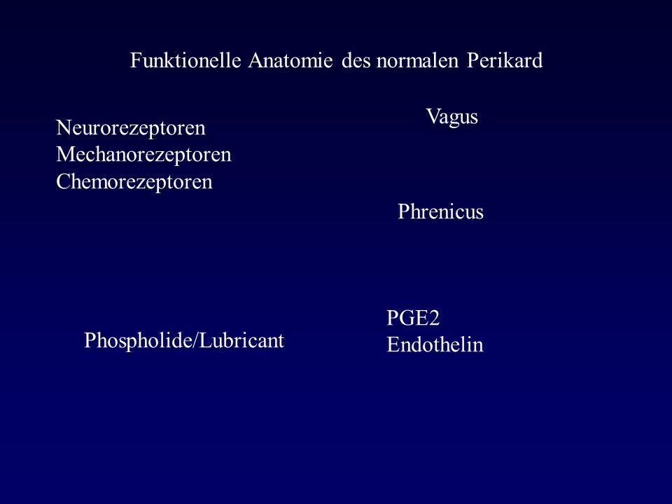 Funktionelle Anatomie des normalen Perikard Neurorezeptoren Mechanorezeptoren Chemorezeptoren Vagus Phrenicus PGE2 Endothelin Phospholide/Lubricant