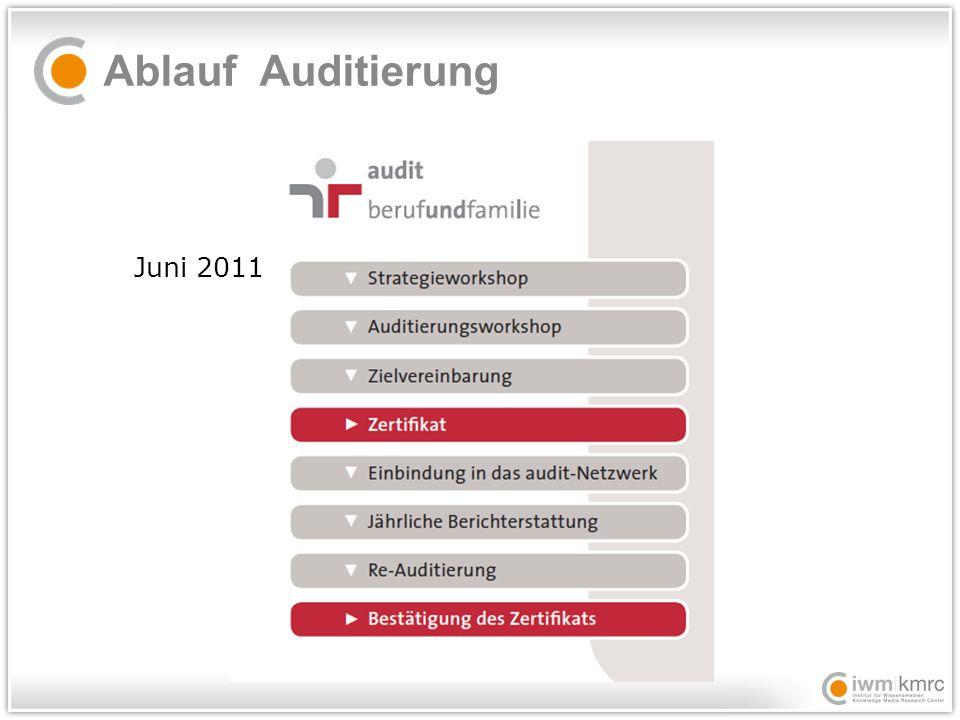 Ablauf Auditierung Juni 2011