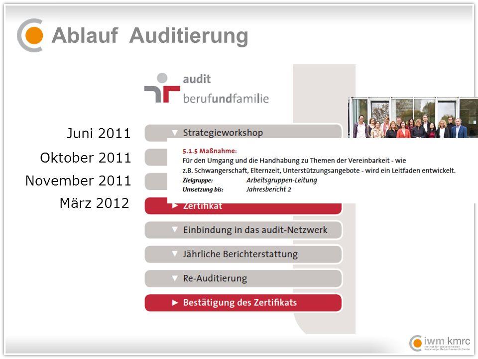 Ablauf Auditierung Juni 2011 Oktober 2011 November 2011 März 2012