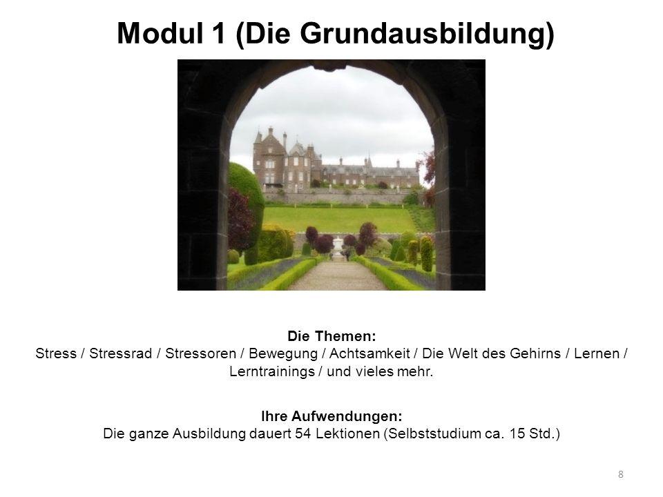 Modul 1 (Die Grundausbildung) Die Themen: Stress / Stressrad / Stressoren / Bewegung / Achtsamkeit / Die Welt des Gehirns / Lernen / Lerntrainings / u