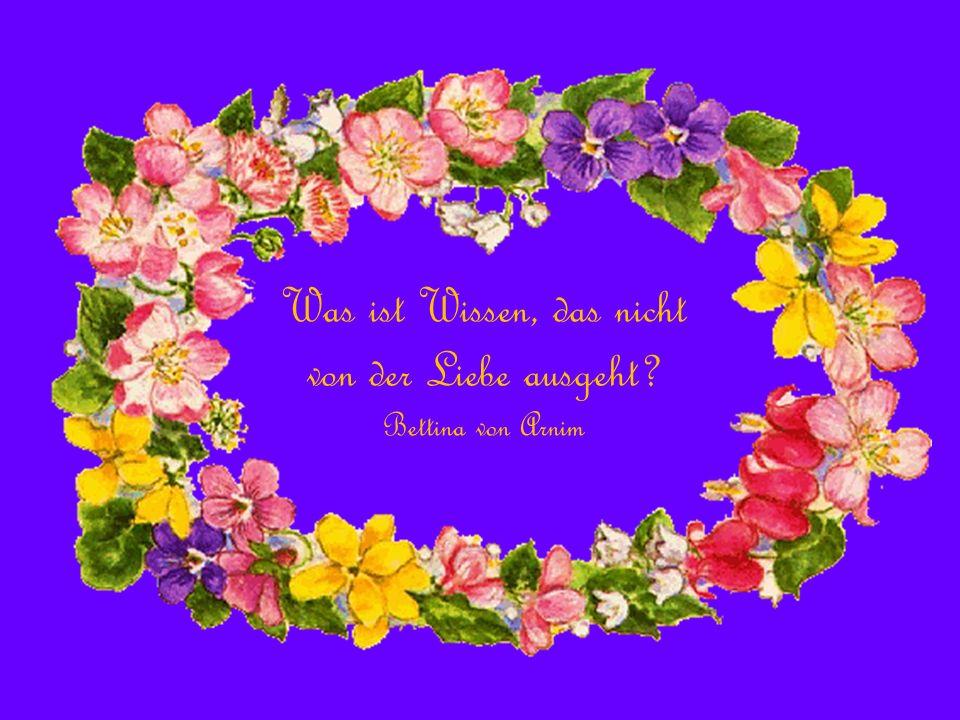Alles, was ihr tut, soll von der Liebe bestimmt sein. Die Bibel