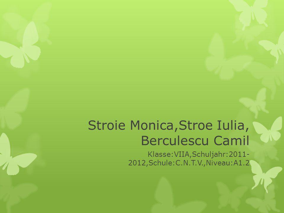 Stroie Monica,Stroe Iulia, Berculescu Camil Klasse:VIIA,Schuljahr:2011- 2012,Schule:C.N.T.V.,Niveau:A1.2