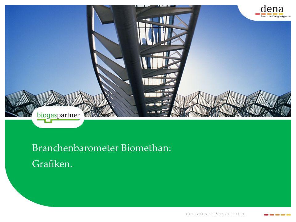 EFFIZIENZ ENTSCHEIDET. Branchenbarometer Biomethan: Grafiken.