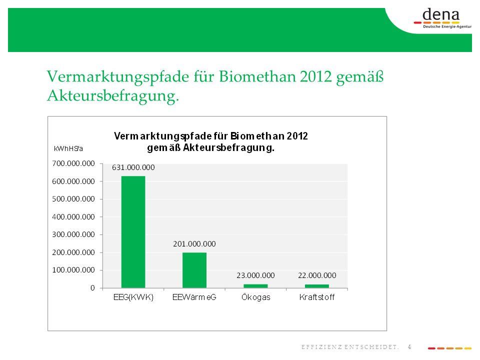 4 EFFIZIENZ ENTSCHEIDET. Vermarktungspfade für Biomethan 2012 gemäß Akteursbefragung.