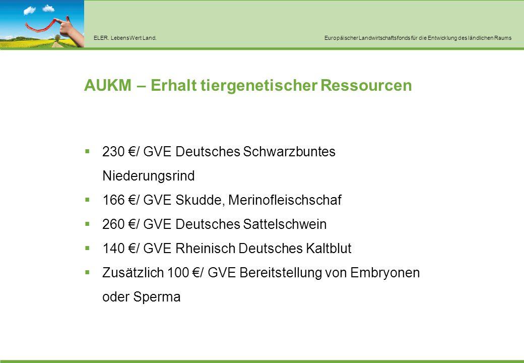 ELER. LebensWert Land.Europäischer Landwirtschaftsfonds für die Entwicklung des ländlichen Raums AUKM – Erhalt tiergenetischer Ressourcen  230 €/ GVE