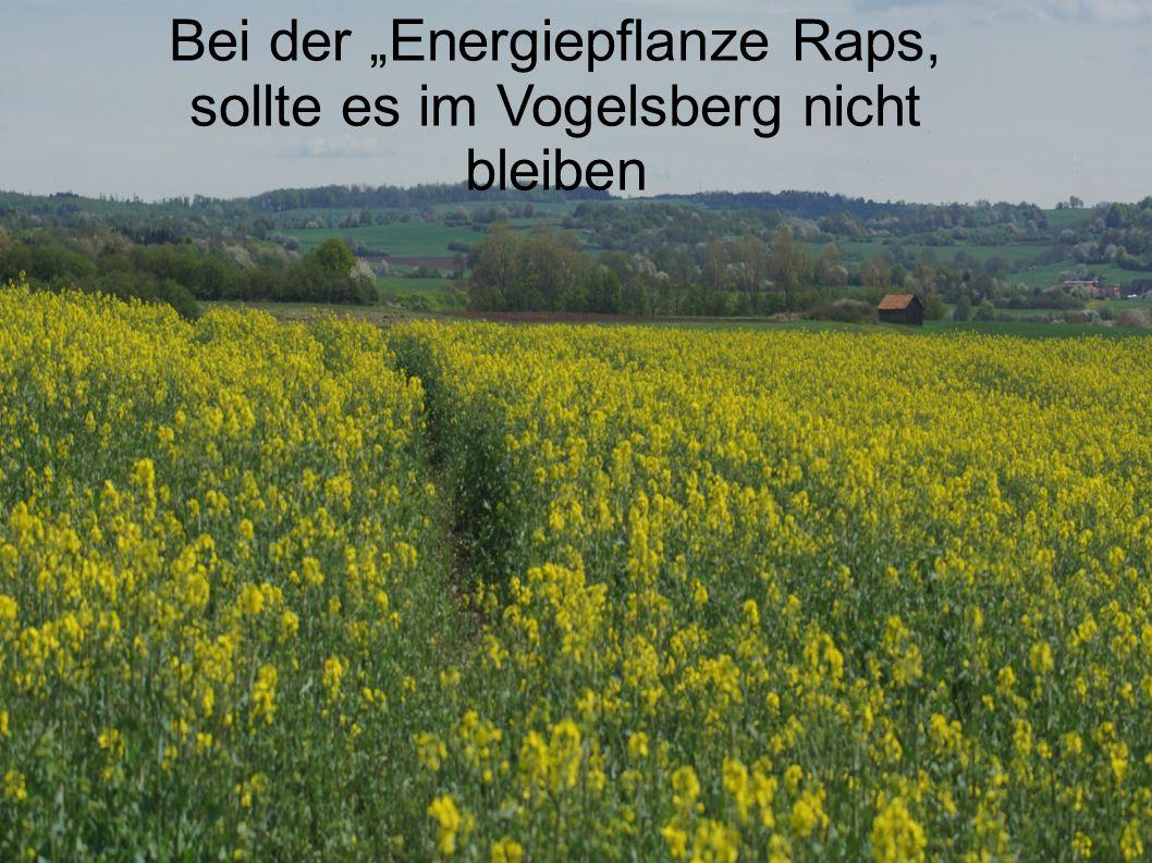 """Bei der """"Energiepflanze Raps, sollte es im Vogelsberg nicht bleiben"""
