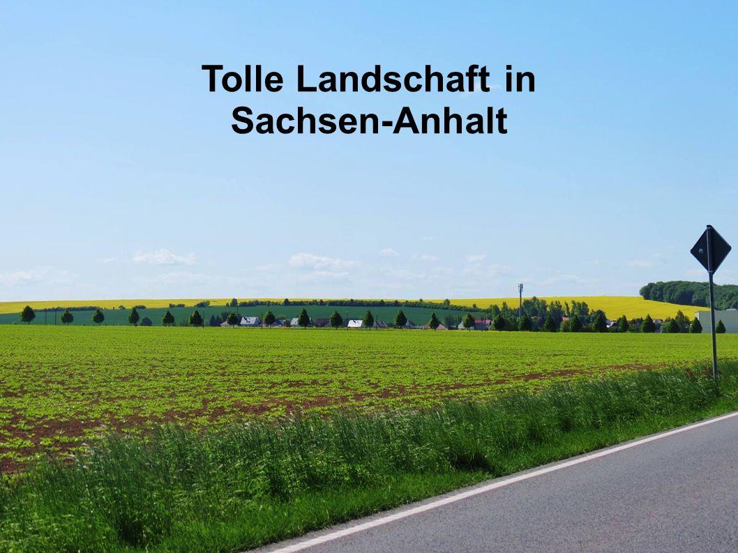 Tolle Landschaft in Sachsen-Anhalt