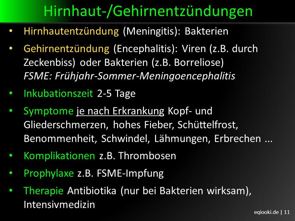 Hirnhaut-/Gehirnentzündungen Hirnhautentzündung (Meningitis): Bakterien Gehirnentzündung (Encephalitis): Viren (z.B.