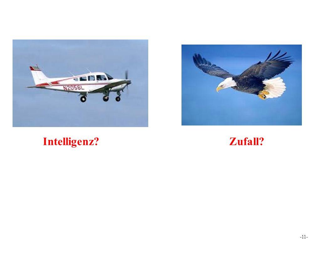 Intelligenz Zufall -11-