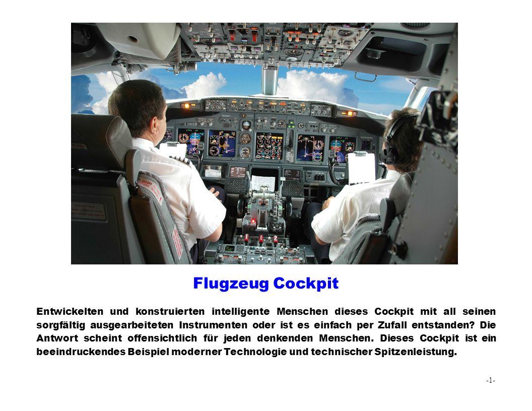 Flugzeug Cockpit Entwickelten und konstruierten intelligente Menschen dieses Cockpit mit all seinen sorgfältig ausgearbeiteten Instrumenten oder ist es einfach per Zufall entstanden.