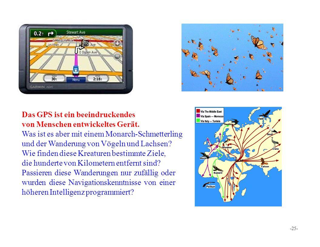 Das GPS ist ein beeindruckendes von Menschen entwickeltes Gerät.