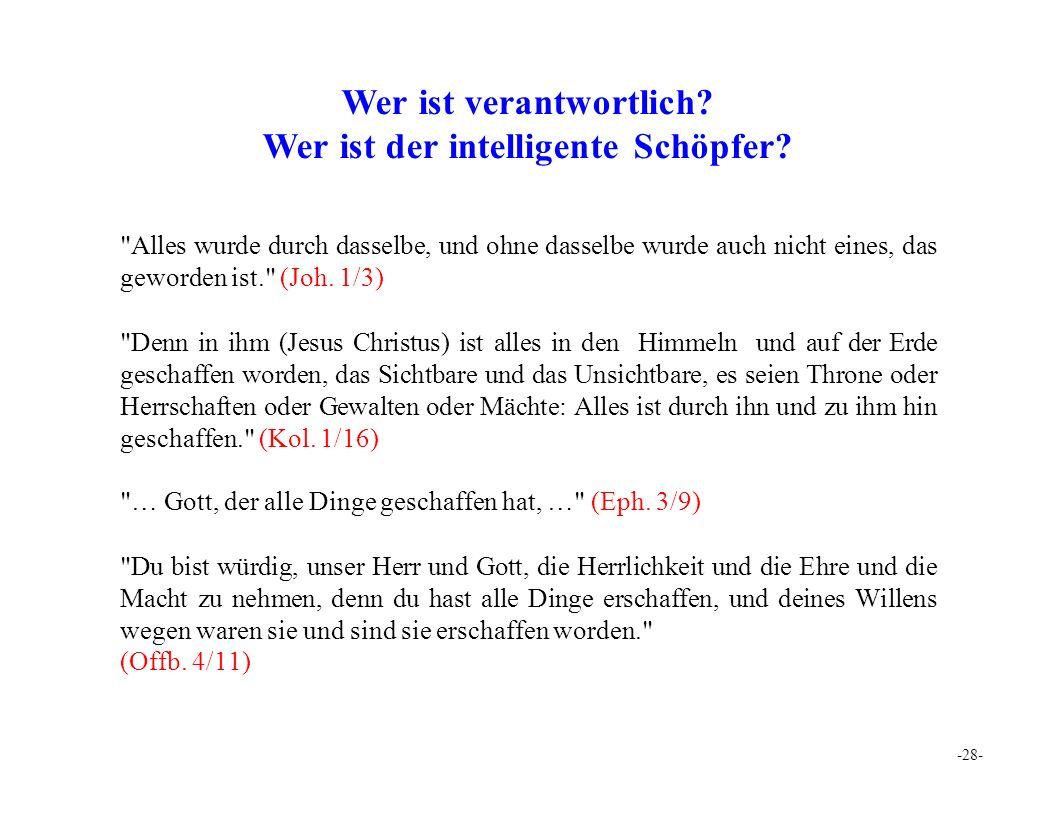 -28- Wer ist verantwortlich. Wer ist der intelligente Schöpfer.