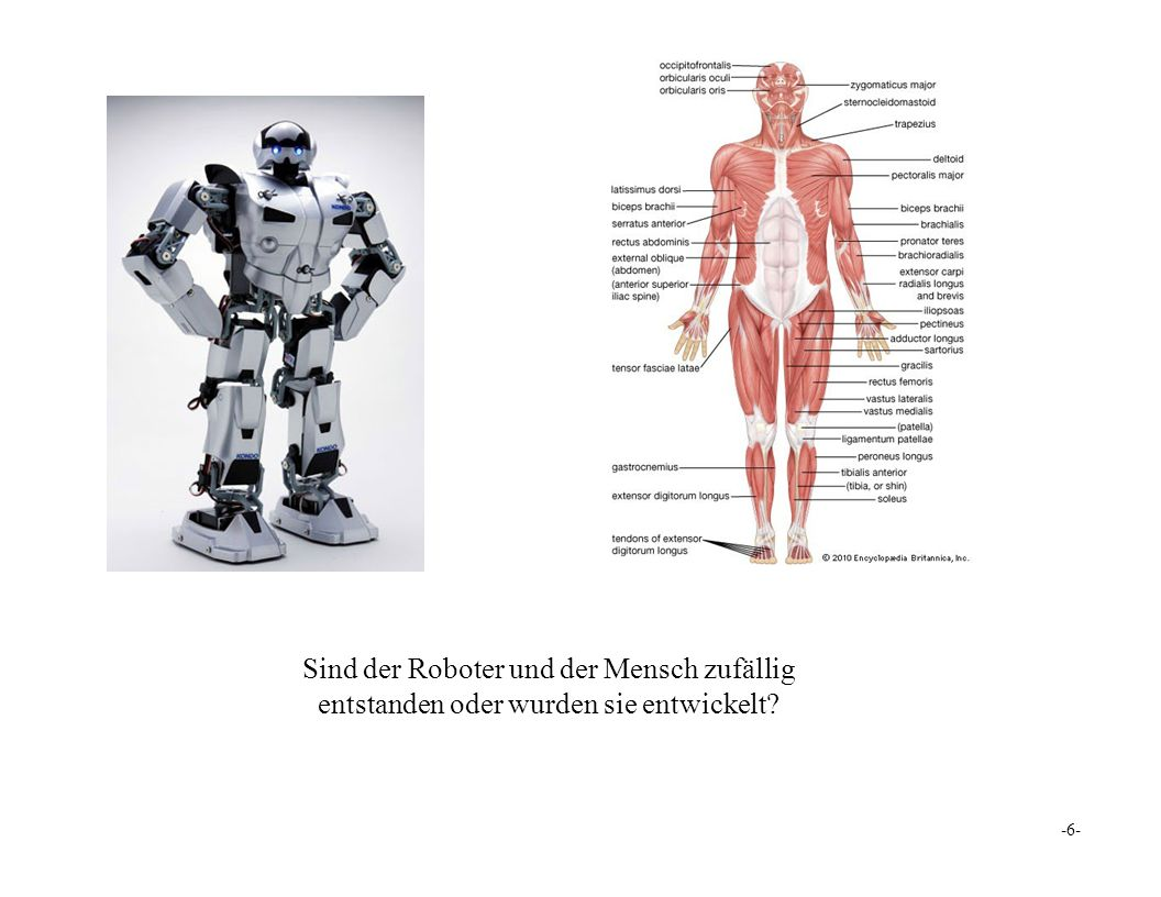 Sind der Roboter und der Mensch zufällig entstanden oder wurden sie entwickelt -6-