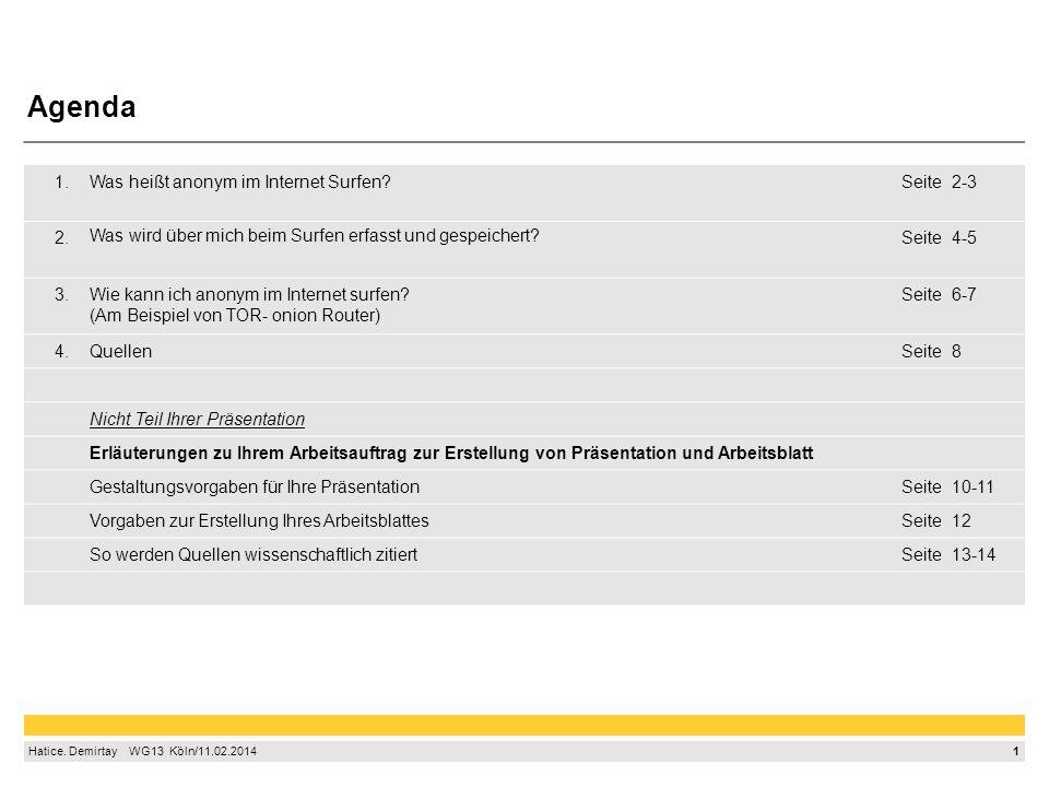 1 Hatice. Demirtay  WG13 Köln/11.02.2014 1.Was heißt anonym im Internet Surfen?Seite2-3 2. Was wird über mich beim Surfen erfasst und gespeichert?