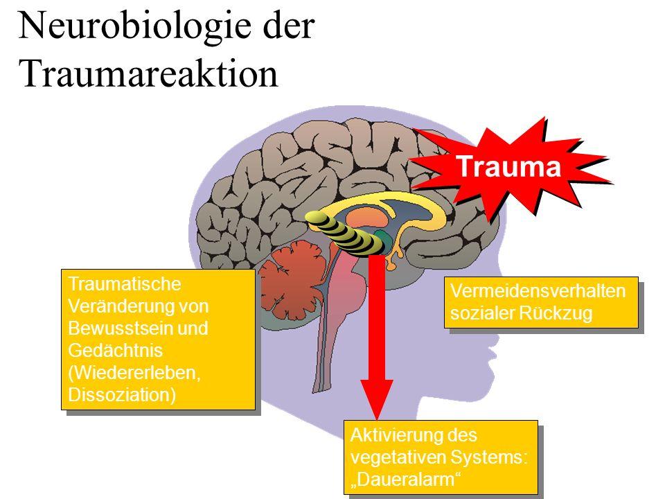 """Trauma Aktivierung des vegetativen Systems: """"Daueralarm"""" Vermeidensverhalten sozialer Rückzug Traumatische Veränderung von Bewusstsein und Gedächtnis"""
