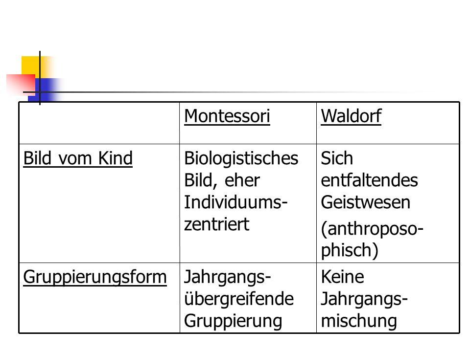 Keine Jahrgangs- mischung Jahrgangs- übergreifende Gruppierung Gruppierungsform Sich entfaltendes Geistwesen (anthroposo- phisch) Biologistisches Bild, eher Individuums- zentriert Bild vom Kind WaldorfMontessori