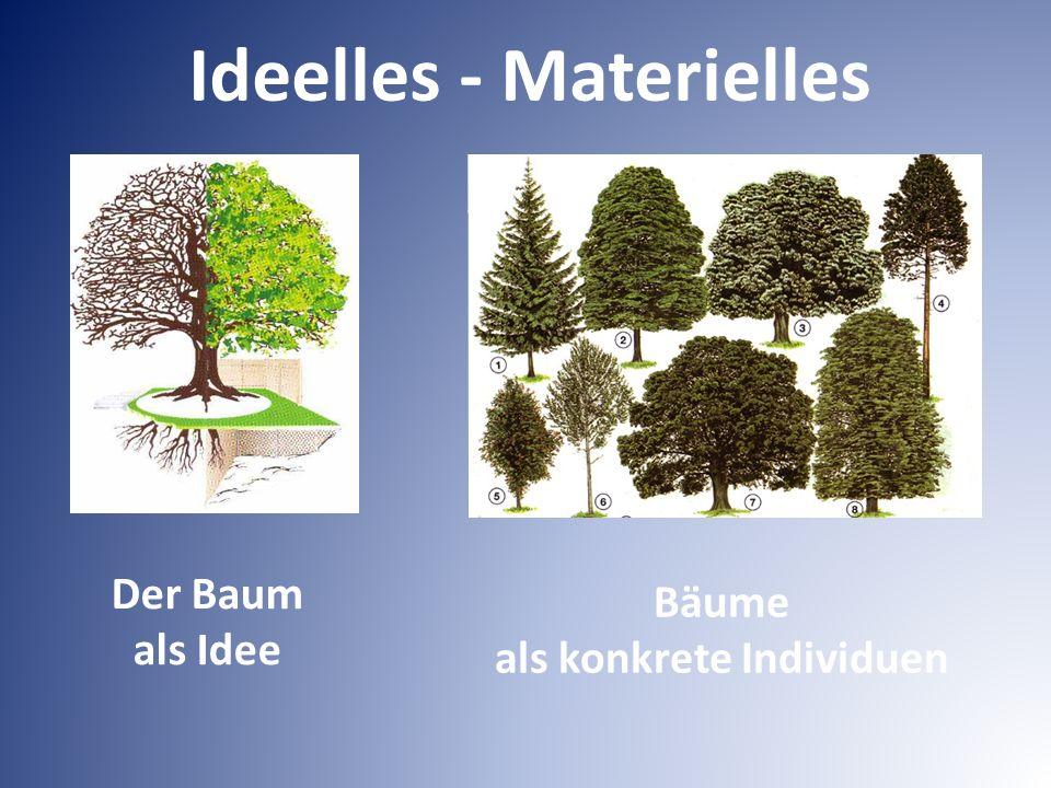Der Baum als Idee Bäume als konkrete Individuen Ideelles - Materielles
