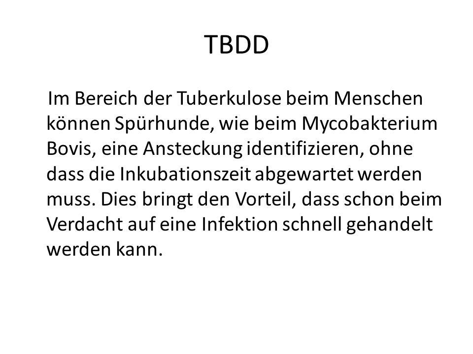 TBDD Im Bereich der Tuberkulose beim Menschen können Spürhunde, wie beim Mycobakterium Bovis, eine Ansteckung identifizieren, ohne dass die Inkubation