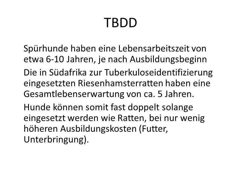 TBDD Spürhunde haben eine Lebensarbeitszeit von etwa 6-10 Jahren, je nach Ausbildungsbeginn Die in Südafrika zur Tuberkuloseidentifizierung eingesetzt