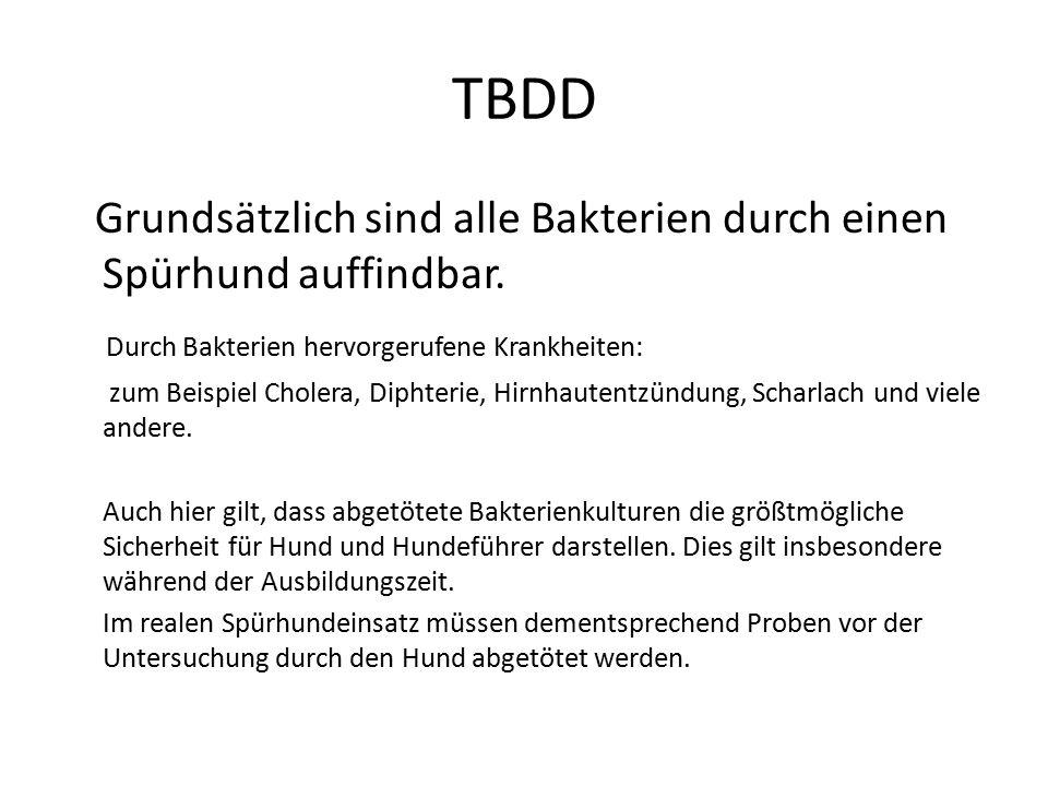 TBDD Grundsätzlich sind alle Bakterien durch einen Spürhund auffindbar. Durch Bakterien hervorgerufene Krankheiten: zum Beispiel Cholera, Diphterie, H