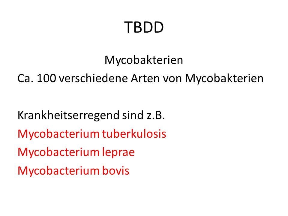 TBDD Mycobakterien Ca. 100 verschiedene Arten von Mycobakterien Krankheitserregend sind z.B. Mycobacterium tuberkulosis Mycobacterium leprae Mycobacte
