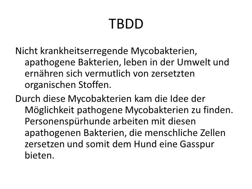 TBDD Bakterielle Infektionen Viele Bakterien sind für uns Menschen sehr nützlich, z.