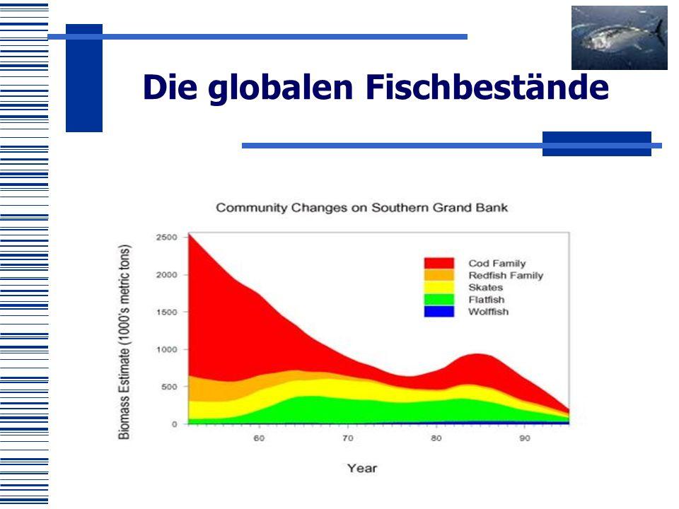 Die globalen Fischbestände