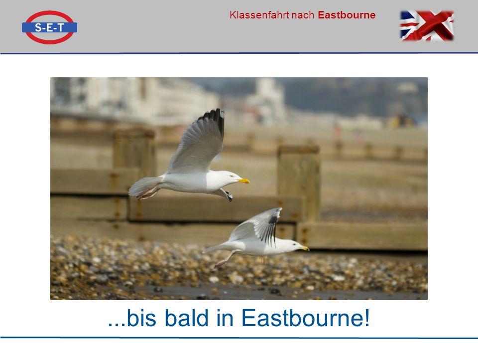 Klassenfahrt nach Eastbourne...bis bald in Eastbourne!