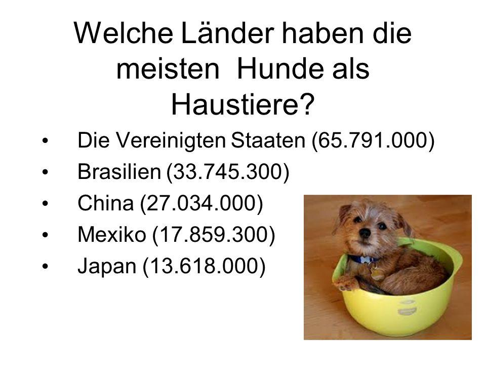 Welche Länder haben die meisten Hunde als Haustiere.