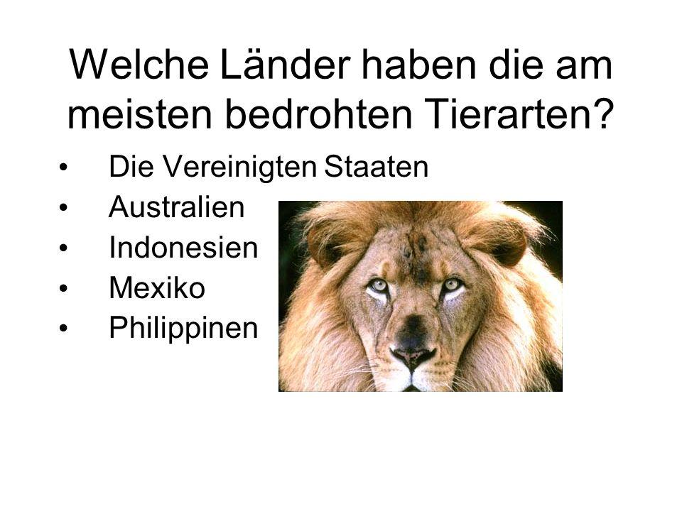 Welche Länder haben die am meisten bedrohten Tierarten? Die Vereinigten Staaten Australien Indonesien Mexiko Philippinen