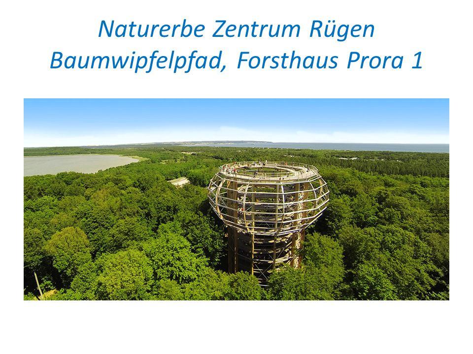 Naturerbe Zentrum Rügen Baumwipfelpfad, Forsthaus Prora 1
