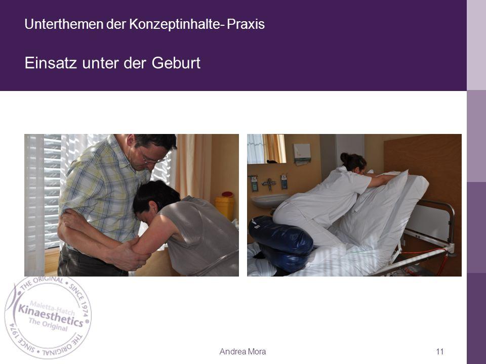 Unterthemen der Konzeptinhalte- Praxis Einsatz unter der Geburt Andrea Mora11