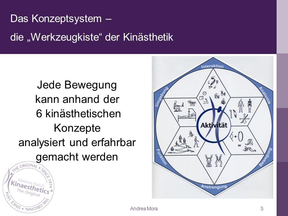 """Das Konzeptsystem – die """"Werkzeugkiste der Kinästhetik Andrea Mora5 Jede Bewegung kann anhand der 6 kinästhetischen Konzepte analysiert und erfahrbar gemacht werden"""