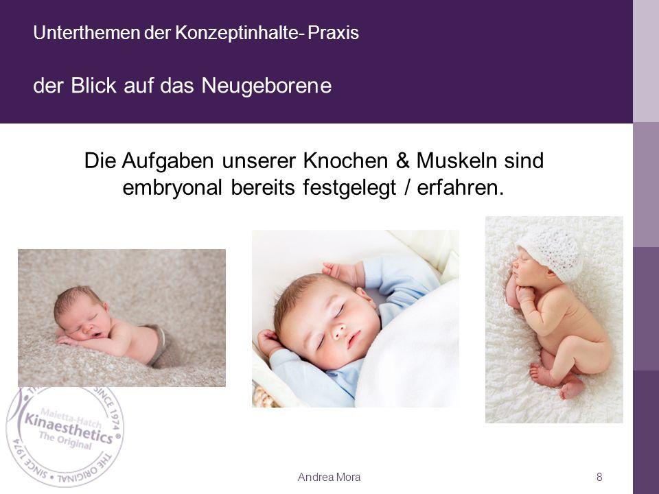 Unterthemen der Konzeptinhalte- Praxis der Blick auf das Neugeborene Andrea Mora8 Die Aufgaben unserer Knochen & Muskeln sind embryonal bereits festgelegt / erfahren.