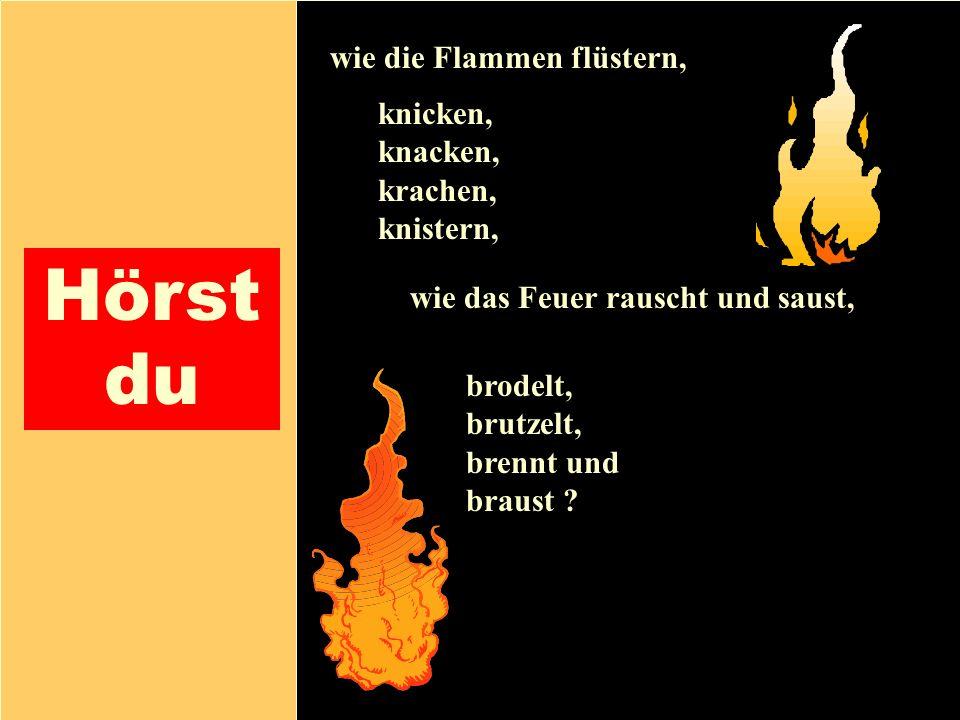 26.04.1999Gerald Kiefer12 Hörst du wie die Flammen flüstern, knicken, knacken, krachen, knistern, brodelt, brutzelt, brennt und braust ? wie das Feuer